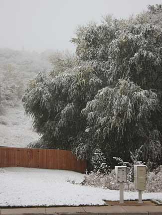 Snow-2009-B