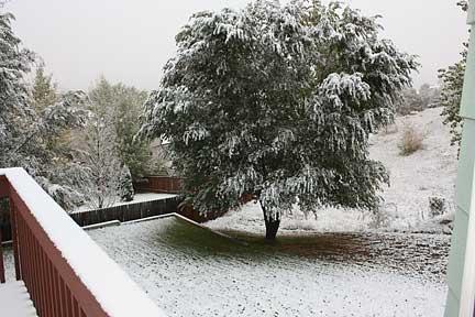 snow-2009